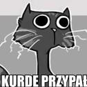 Gozdziu23